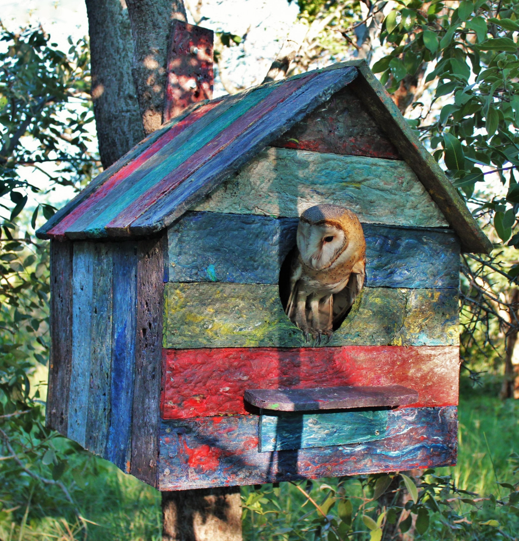gallery/recycled plastic barn owl house